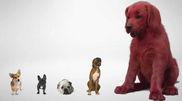 CLIFFORD THE BIG RED DOG Live-Action Movie Announced For 2021 With First-Look CGI Teaser